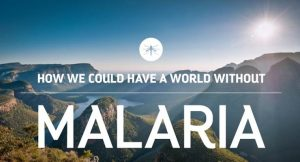 World without malaria