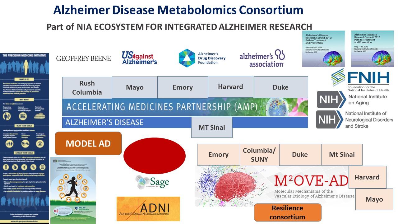 alzheimer's disease metabolomics consortium | interdisciplinary