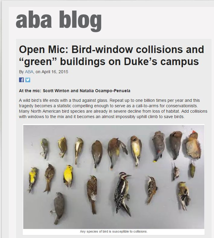 American Birding Association Blog About Bird Window Collisions
