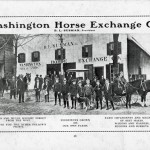 Advertisement for B.L. Susman's Washinton Horse Exchange Co. in the sales booklet 'Washington, North Carolina,' 1913