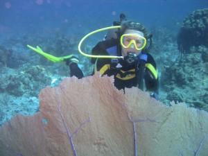 Zullig Scuba Diving