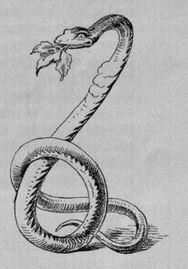 KHM 16 - The Three Snake Leaves