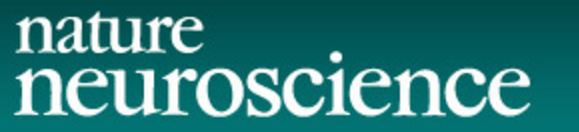 Nature Neuroscience: Viewpoint on vmPFC