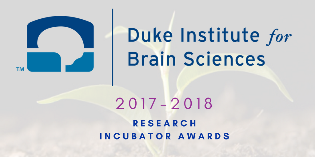 Duke Institute for Brain Sciences Selects Six Teams for Research Incubator Awards