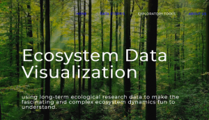 Ecosystem for data visualization