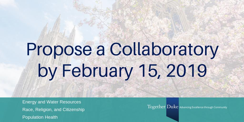 Participant Application Form Duke Of Ed, Duke Collaboratories Rfp, Participant Application Form Duke Of Ed