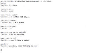 An example of the author's chatbot in action.