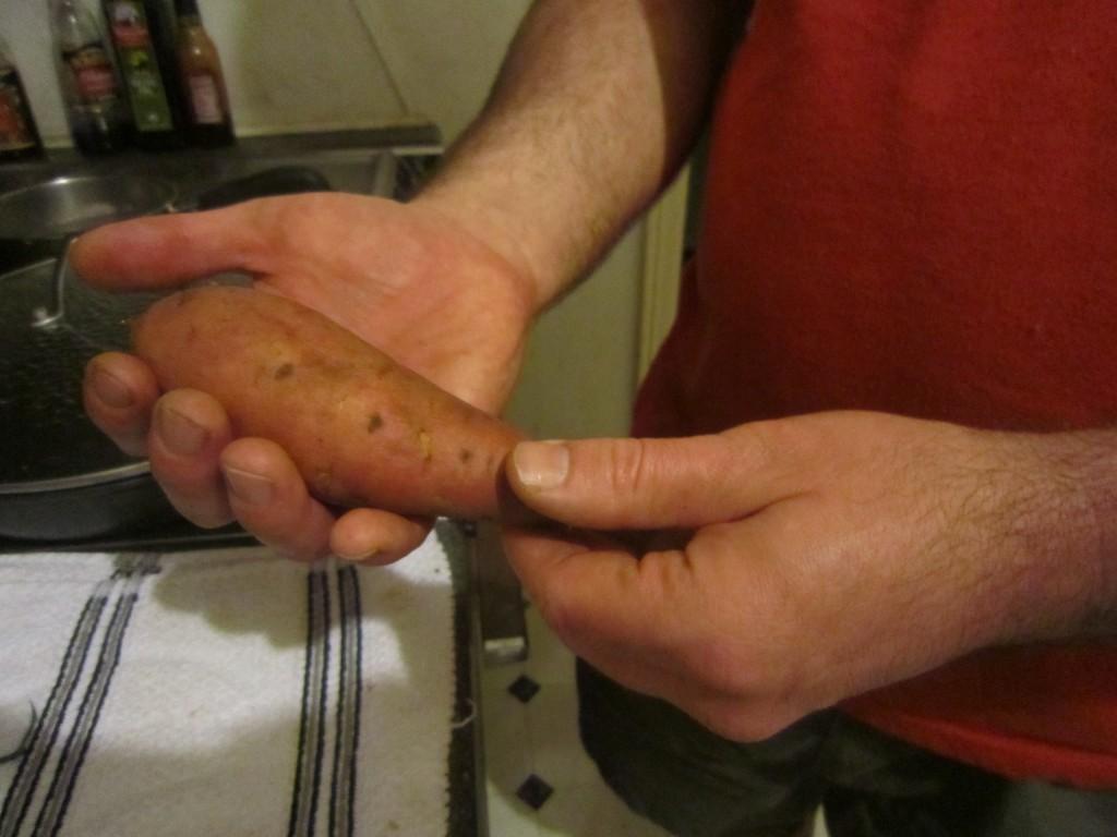 Covtington sweet potato
