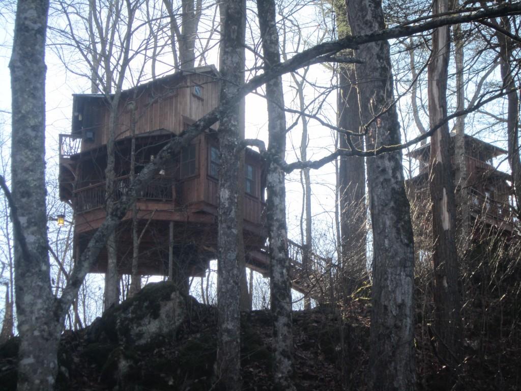 Tree houses on the Virginia Creeper