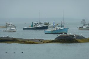 Stonington lobster boats