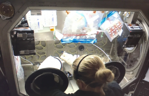 Astronaut Dr. Kate Rubins changes nutrients for space-flown iPSC-CMs. (Photo credit: Arun Sharma)