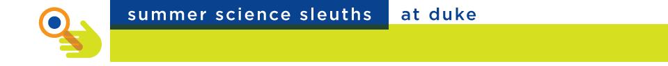 header-sleuths