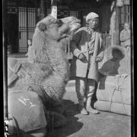 Camel Head, 1917-27