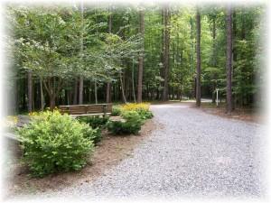 Vignette path