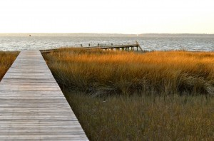 pier into sound
