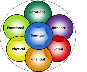 wellness wheel image color