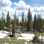 Medicine Bow Mountains, Wyoming (June 2013)