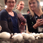 Agaricus at the MRC