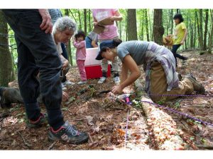 Slide22 (Summer 2016 – Fungi of Mountain Lake Biological Station)